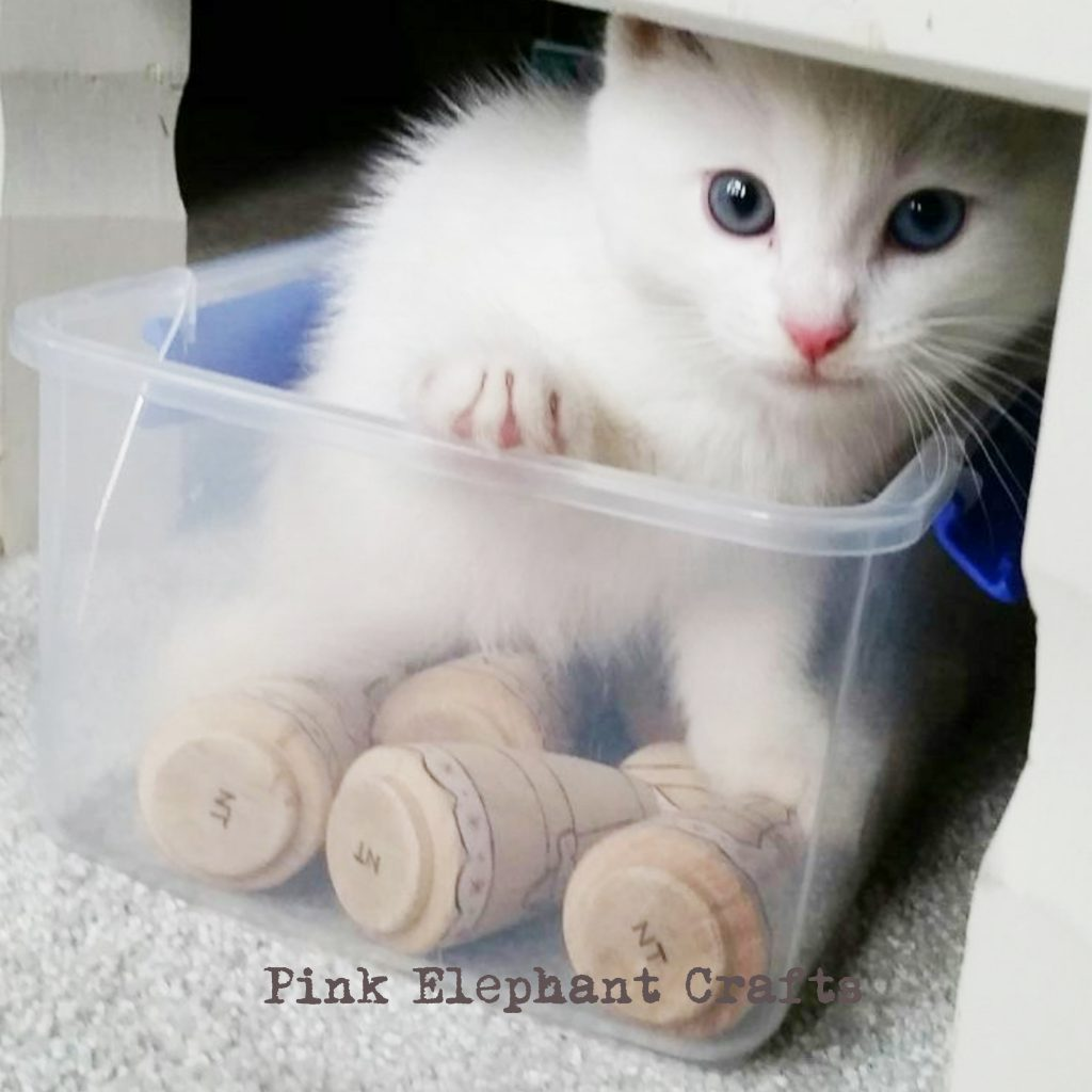 cute kitten with wooden peg dolls