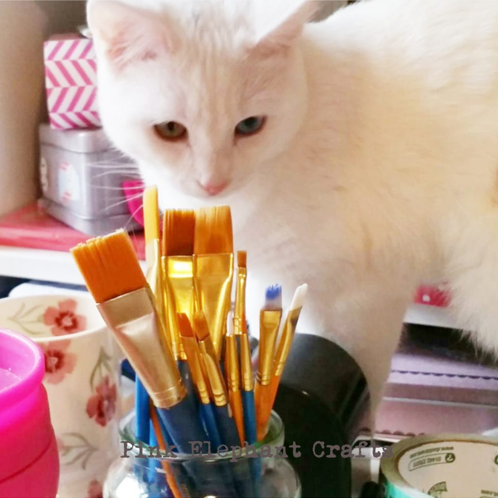 cute white kitten inspects peg doll artists paintbrushes