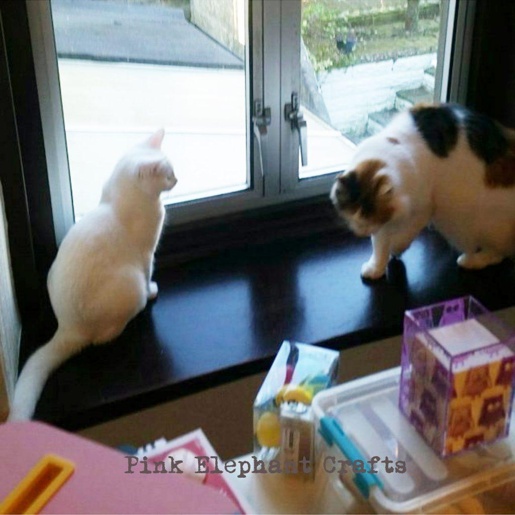 cute cats in peg doll artists studio